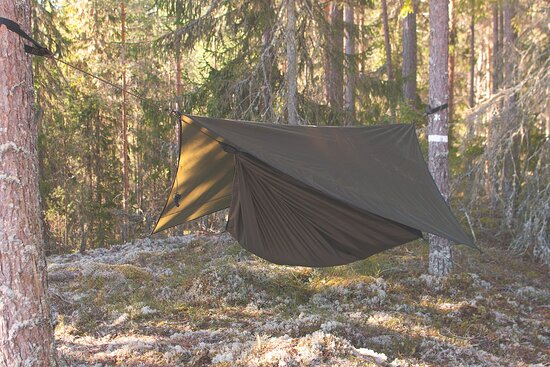 Sleep, relax and enjoy the nature from your hammock