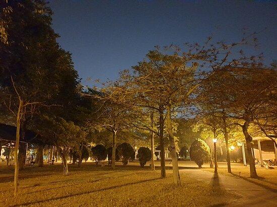 Anyi Park