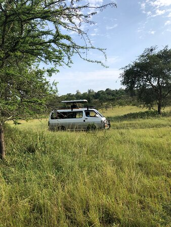 10 Day Western Uganda Wildlife Safari: Brave car, survived the streets of Uganda and was very comfy 