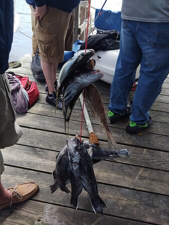 Great time, lots of fish caught.