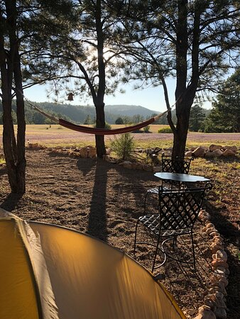 Cozy tent view with hammock at Bluebird Mesa