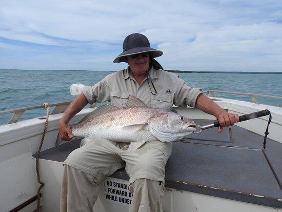 Garig Gunak Barlu National Park, Úc: 110cm black jewfish