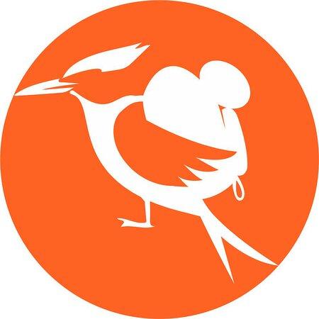 The Tern Travellers - Wild Adventure Safari