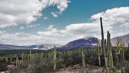 Reserva de la Biosfera