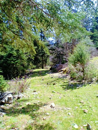 Half Day Rif valley Excursion from Chefchaouen: beautiful trail