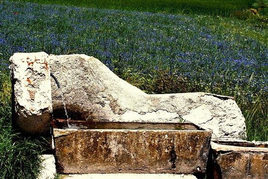 Castelluccio di Norcia, Italy: l'abbeveratoio