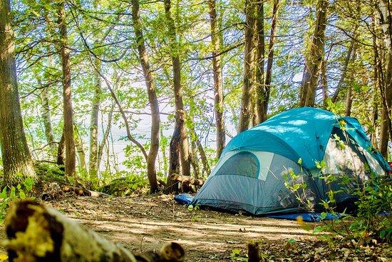 Camping de la Pointe