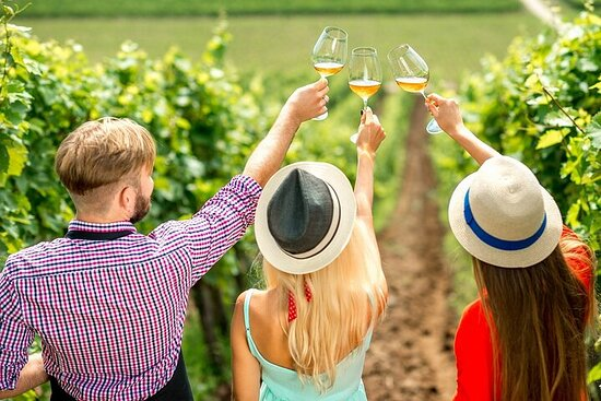 Tour de vino de día completo: experiencia vinícola escénica en Lake...