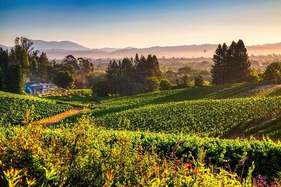 Lynmar Estate Winery