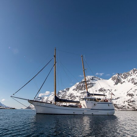 World Sea Explorers