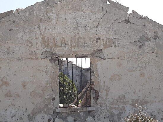 ISOLA DELL' ASINARA  SARDEGNA - 2 APRILE 2021-FOTO MAURO PORTO TORRES