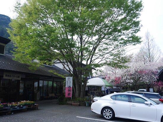 Konohana Garten Oyama Honten