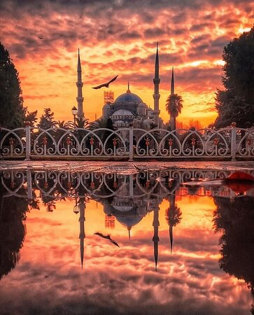 Blue Mosque - İstanbul - TURKEY 📸@abdullahshhn