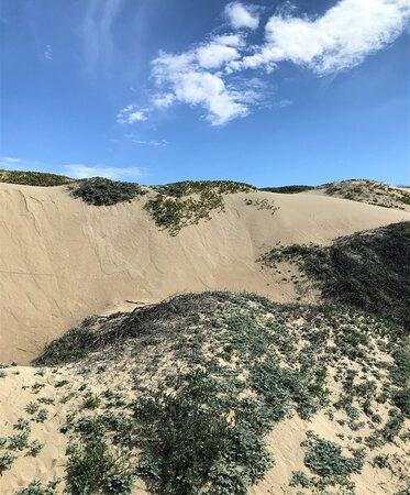 Guadalupe, CA: Oso Flaco Lake Dunes
