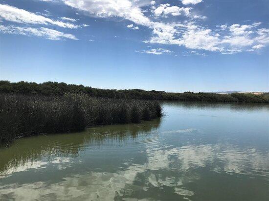 Guadalupe, CA: Oso Flaco Lake