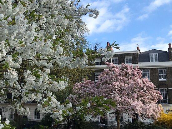 Canonbury Square & Gardens