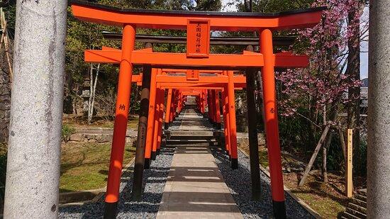 Nagasaki, Japan: road of shrine gates