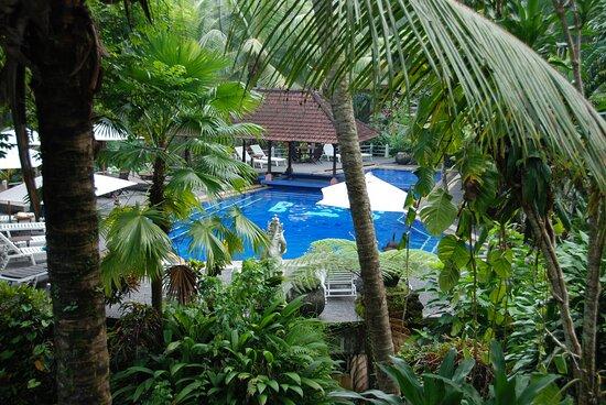 Souvenirs de mes Voyages --- Indonésie -- Java -- Notre magnifique séjour à Ubud dans cet hôtel au milieu d'une luxuriante végétation -- La détente absolue -- 21.04.04 -- Cliquer sur la photo pour découvrir la prise de vue complète