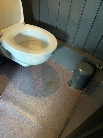 tache d'urine sur le sol des wc et vous n'avez pas l'odeur ...