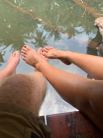 Our feet just above the creek. So many fish!