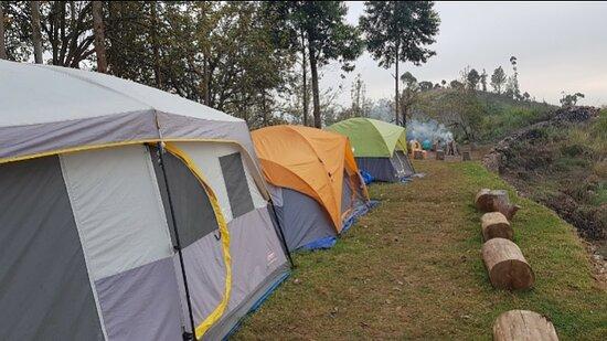 Best tent stay Kodaikanal Tent stay