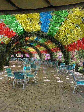 Imagen de Miracle Garden Tour con entradas y traslados