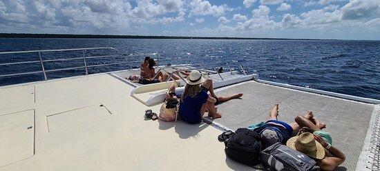 catamaran to Isla Saona