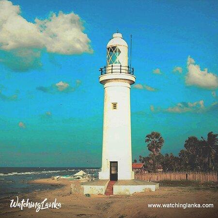 Sri Lanka: Visit More -  https://www.watchinglanka.com/thaleimannar/