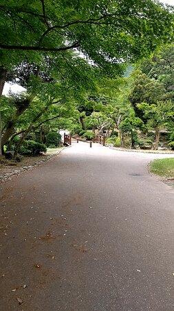Yahiko-mura Photo