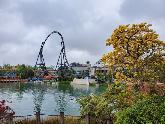New coaster...not yet open in 3/21.