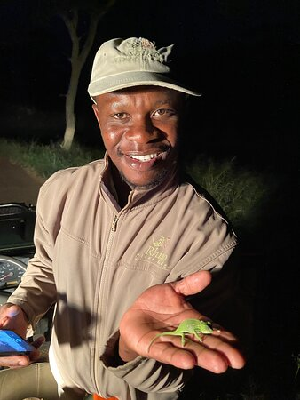 Manyoni Private Game Reserve, South Africa: Bongani showing us a dwarf chameleon