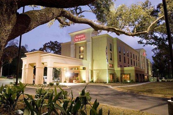 Hampton Inn & Suites Mobile Providence Park/Airport, Hotels in Mobile