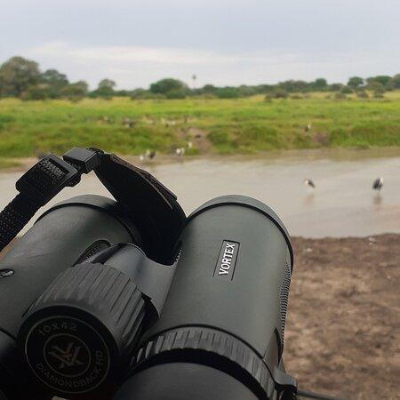 Serengeti National Park, Tanzania: Welcome home of adventures #lovenature