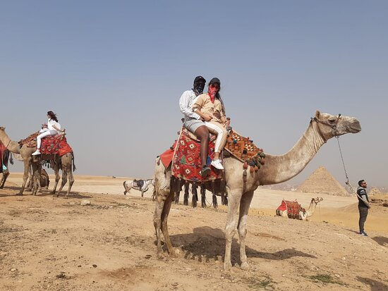 Egypt Tours For You
