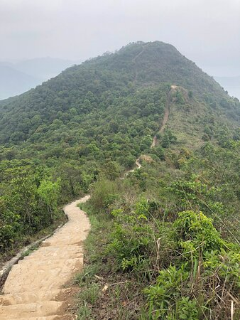 Wilson Trail Section #9 - Pat Sin Leng Country Park - approaching the monumental peaks