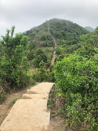Wilson Trail Section #9 - Pat Sin Leng Country Park - climbing the peak