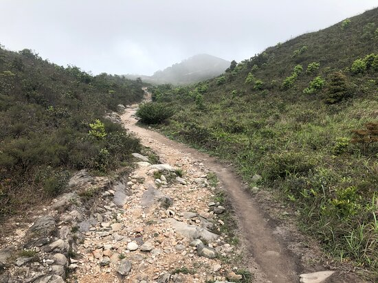 Wilson Trail Section #9 - Pat Sin Leng Country Park (6)