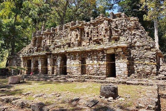 Zona arqueológica de Yaxchilan y Bonampak saliendo desde Ocosingo...
