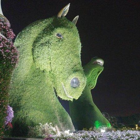hedge horse
