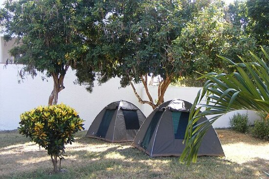 7-Day Private Camping Safari Tour in Kenya with Meals