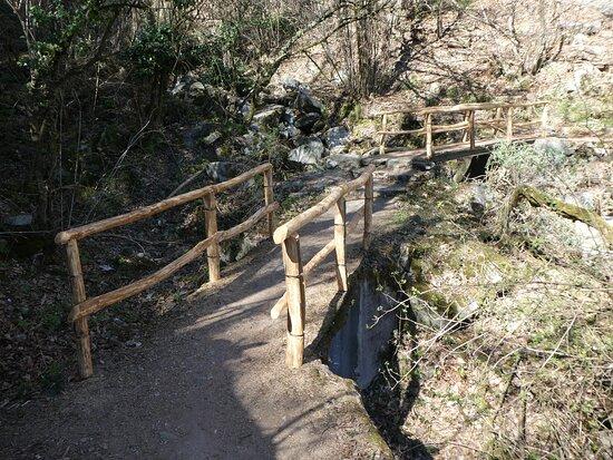 Sentiero Collina Alta