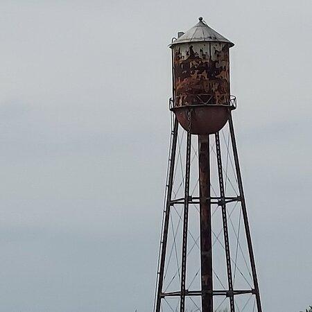Princeton Photo