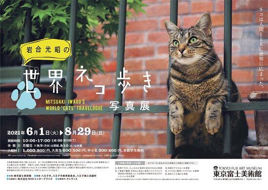 พิพิธภัณฑ์ศิลปะฟูจิโตเกียว