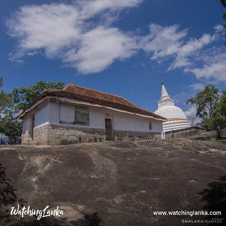 Sri Lanka: Visit More -  https://www.watchinglanka.com/devanagala-viharaya/