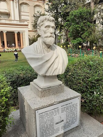 A statue of Acharya P C Ray installed in the garden