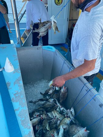 Staff removed fish from hook, put them on your stringer (provided) iced them down and cleaned them.
