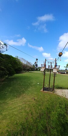 Zipline Tour On Oahu's North Shore Photo