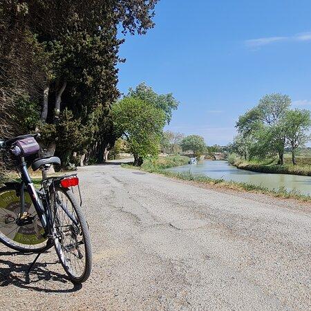 Les Vélos Du Somail
