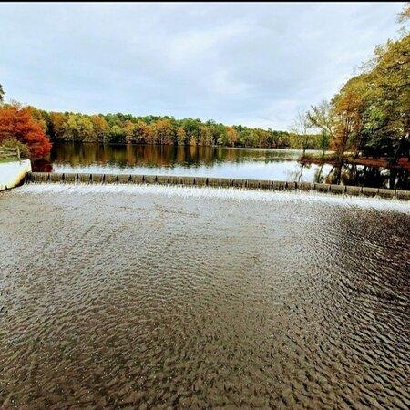 Delaware Bild