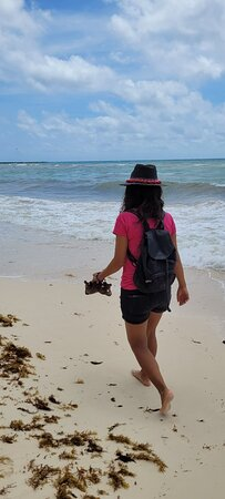 Playa del Carmen-billede